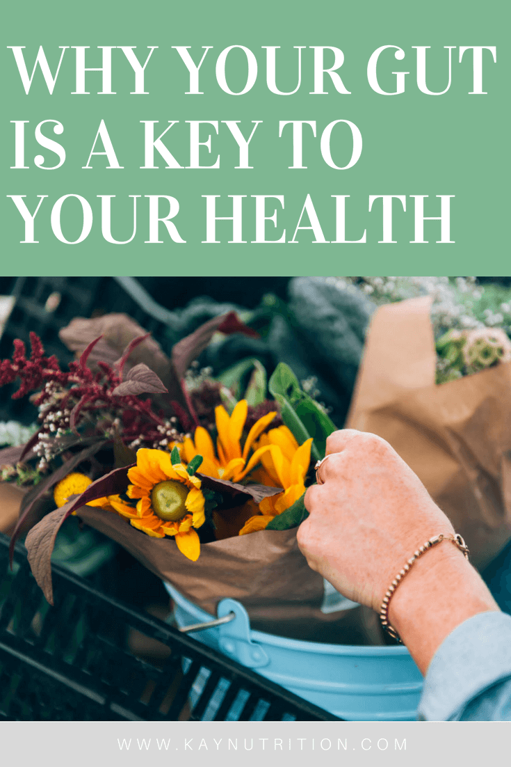 Why Your Gut is a Key to Your Health
