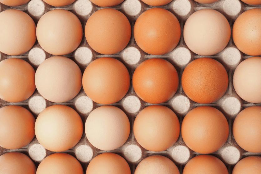 Why You Should Rethink Cholesterol