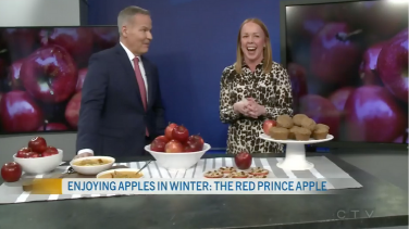 Enjoying Apples in Winter: The Red Prince Apple