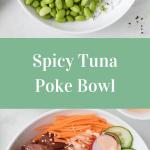 Spicy Tuna Poke Bowls