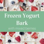 Frozen Yogurt Bark with Berries