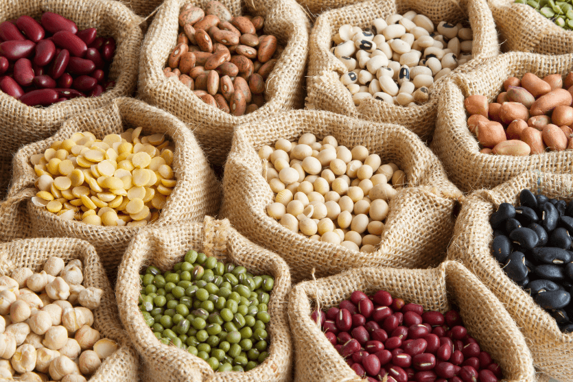 Vegetarian Protein: A Complete Guide